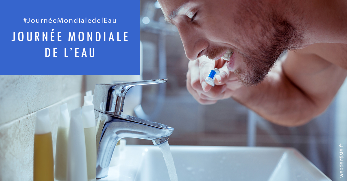 https://dr-drean-maela.chirurgiens-dentistes.fr/Journée de l'eau 2