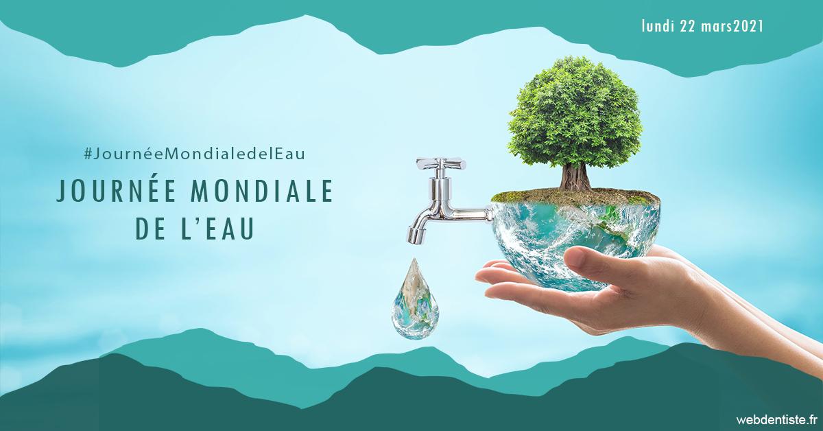 https://dr-drean-maela.chirurgiens-dentistes.fr/Journée de l'eau 1